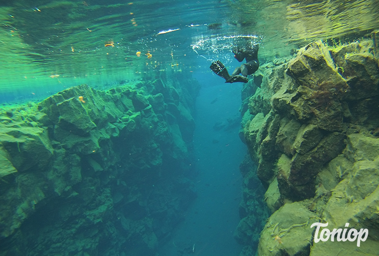 Thingvellir, silfra, Snorkeling, plongée, islande, parc national
